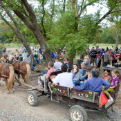 7th Annual Bradley Farm Festival near New Paltz