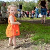 The 2011 Farm Festival on Ray Bradley Farm