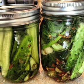 Lacto-Fermented Pickles with Garlic Scapes and Fennel by Dori Fern (Instagram)
