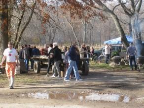 farm party 2015 3