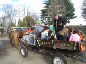 farm party 2015 5